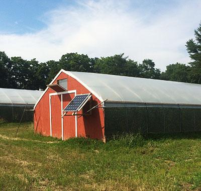 Contact Replenova Farm