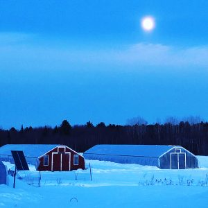 Replenova Farm Durham Maine