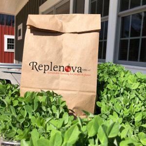 Replenova Organic Vegetable packs